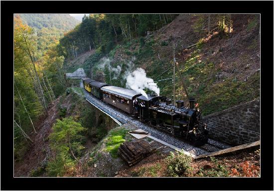 Railway Museum Blonay-Chamby: Montée en forêt
