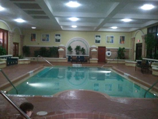 Embassy Suites by Hilton Orlando - International Drive / Convention Center: indoor pool