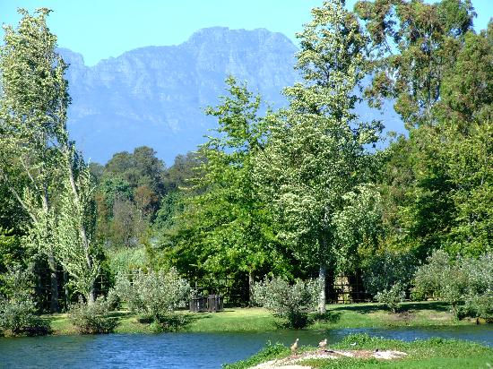 Cape Town Seamore Express Tours and Guesthouse: spier