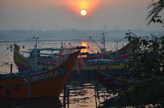 The Capital Fort Kochi: Sunrise from the hotel over the harbour