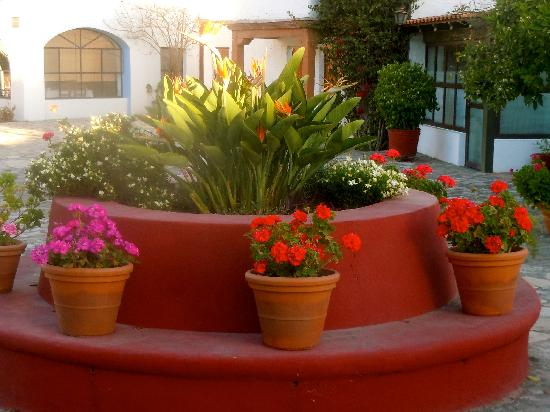 Posada de La Aldea: Pretty flowers everywhere
