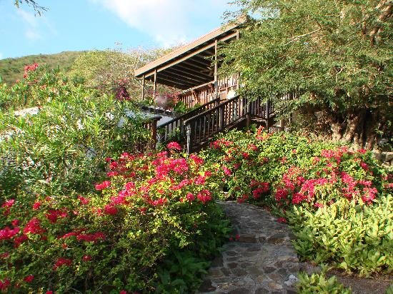 Stunning gardens surround Villa del Sole Video tour link