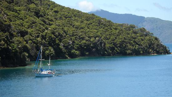 The Portage Resort Hotel: Portage Bay on Queen Charlotte Track