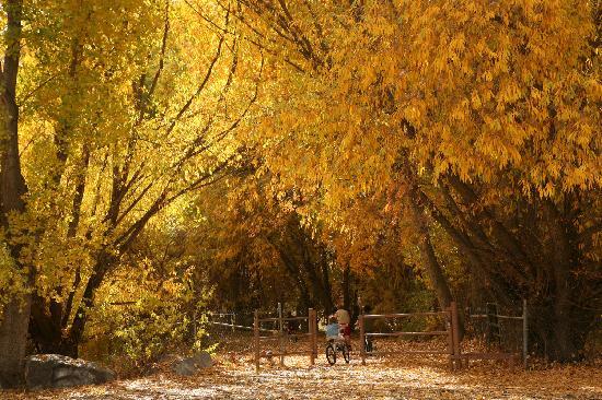 Orem, UT: Provo River Trail
