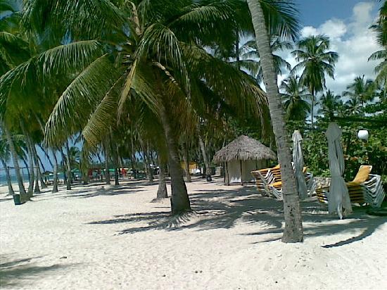 Playa Esmeralda Beach Resort: in spiaggia anche il gazebo x i massaggi