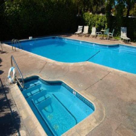 Caravelle Inn & Suites: Pool View