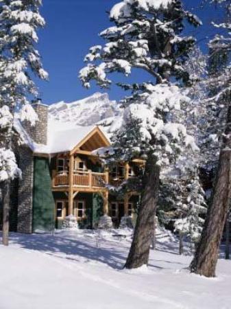 Buffalo Mountain Lodge: View