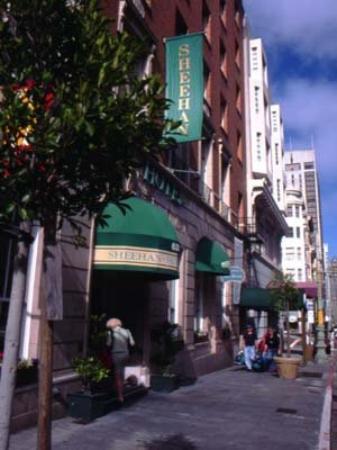 Sheehan Hotel : View