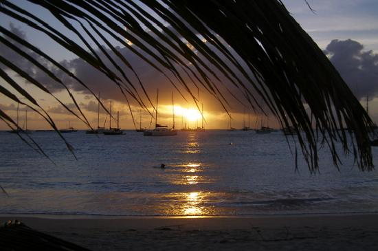 Cole Bay, St. Maarten/St. Martin: Royal Palm Beach Sunset