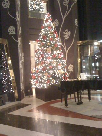 Hotel Plaza: The piano and the Christmas tree at lobby