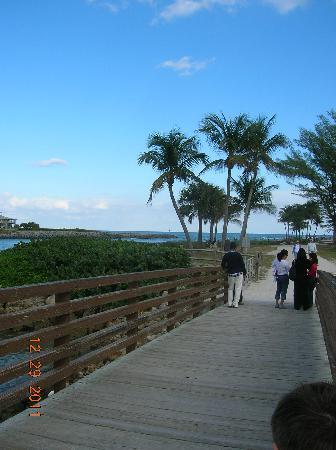 Dubois Park: nice bridge with view of intercoastal & ocean