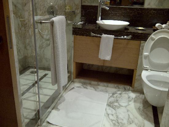 Radisson Blu Marina Connaught Place : Clean and efficient bathroom