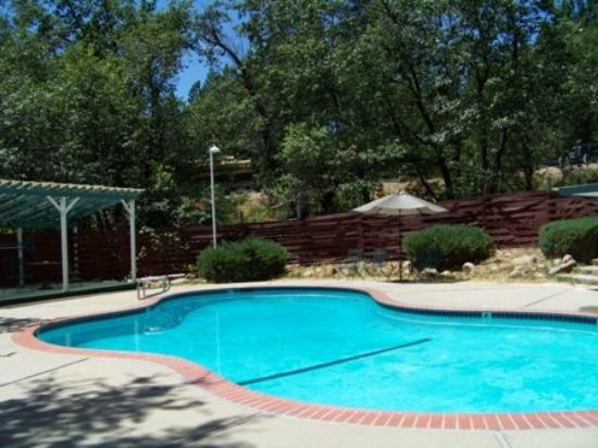 Golden Chain Resort Motel: Pool