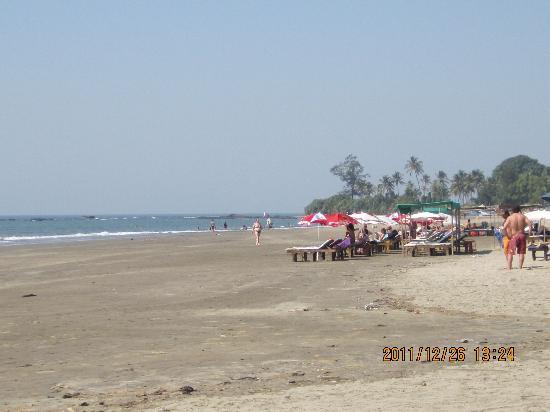 Montego Bay Beach Village: The beach looking north