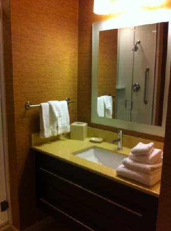 TownePlace Suites San Antonio Downtown: vanity