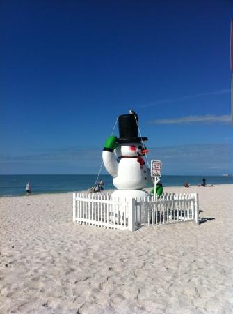 Caddy's on the Beach: Christmas in December!