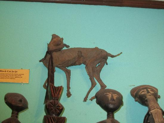 New Orleans Historic Voodoo Museum: a cat who has seen better days