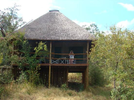 Muweti Bush Lodge: getlstd_property_photo