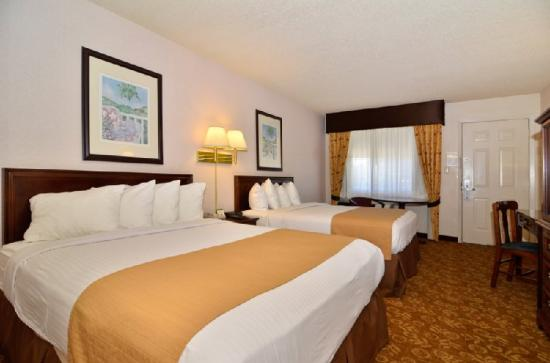 Quality Inn & Suites : Guest Room