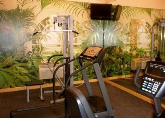 Palace Hotel: Health Club