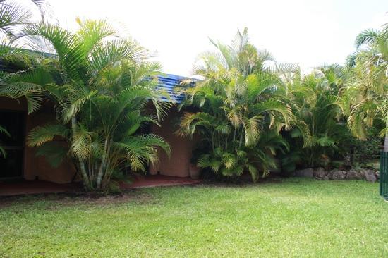 Pialba Motor Inn : Vue jardin