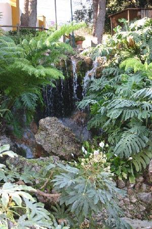 Jardín Botánico Molino de Inca: Wasserfall