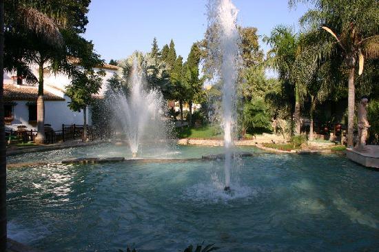 Jardín Botánico Molino de Inca: Springbrunnen