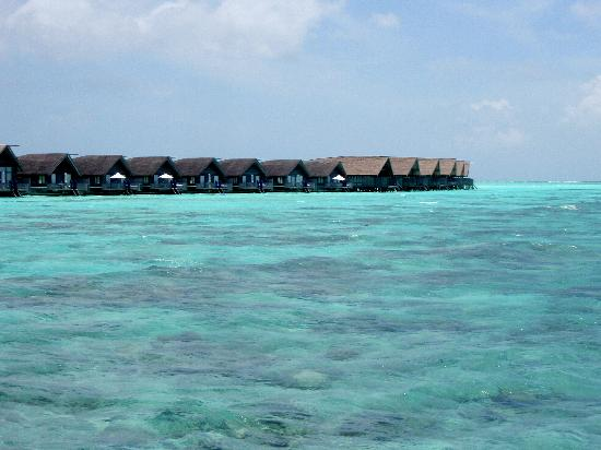 COMO Cocoa Island: View of some of the dhoni water villas from the jetty