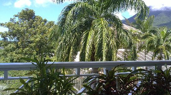 Oasis in the Gardens Restaurant: View 1 From the Restaurant Balcony