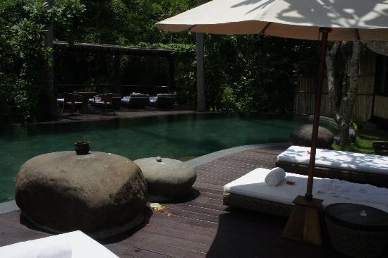 Fivelements Bali Retreat: piscina