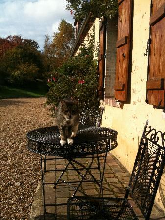 Domaine de La Louveterie : Outside the guest house