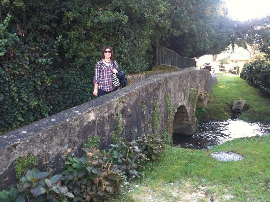 Domaine de La Louveterie : Nearby, on a walk to the local village