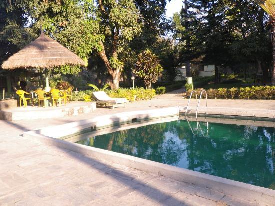 The Rhino Residency Resort: Pool area