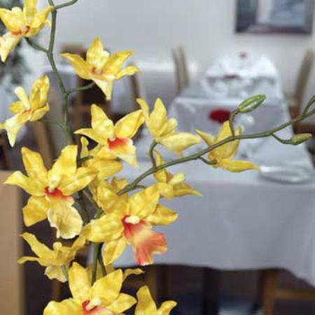 Alexandra Hotel: Dining