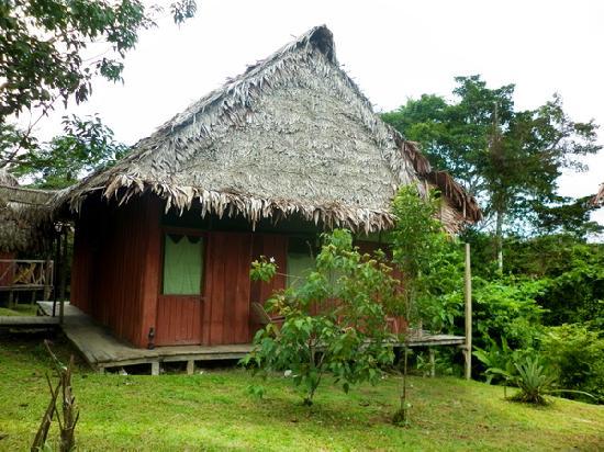 Amazon Reise Eco Lodge: Cabañas