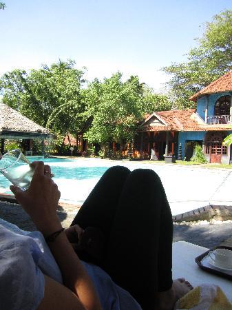 Vivanta by Taj - Kumarakom: The pool area