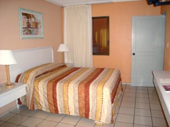 Hotel Paraiso Suites: Guest Room