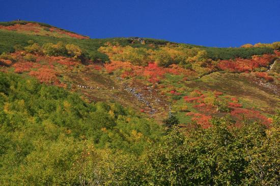 赤岳銀泉台, 銀泉台からみる赤岳登山道の紅葉