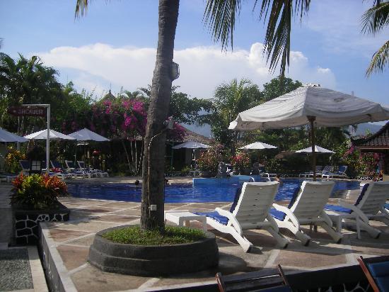 Aneka Lovina Villas & Spa: Zwembad