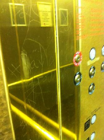 Decatur Conference Center and Hotel: elevators full of scraps with bad words