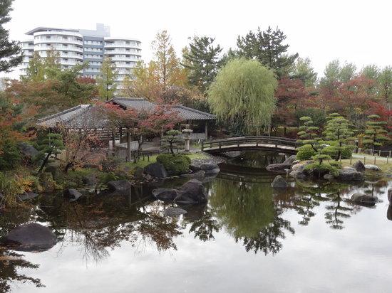 Toyanogata Park