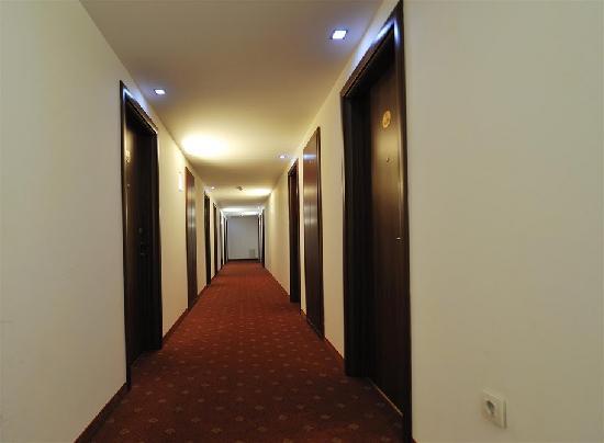 Minerva Hotel : Lobby