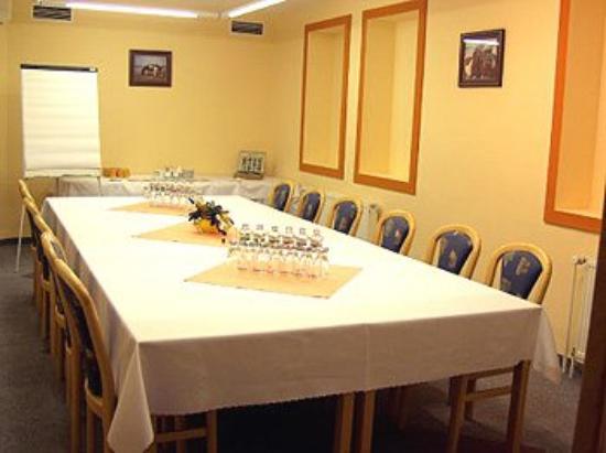 Hotel Koruna : Meeting Facilities
