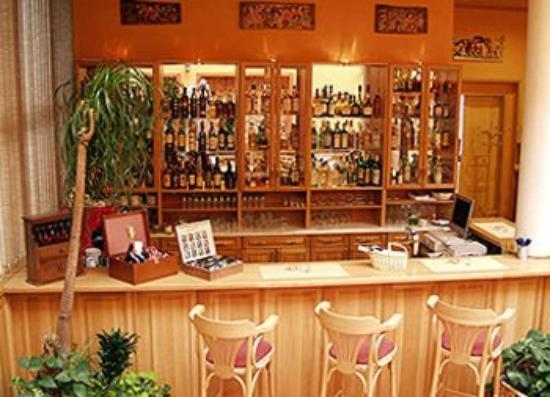 Hotel Koruna : Lounge