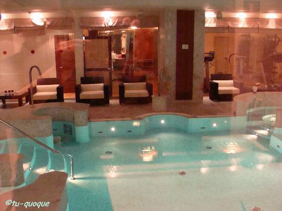 Hotel Principi di Piemonte: Swimming pool
