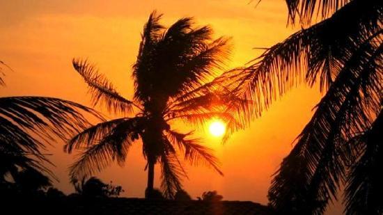Hotel Oasis: coucher de soleil vu de ma chambre