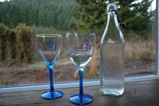 Carson Ridge Luxury Cabins: They even put thought into choosing the water bottle!