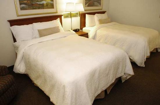Onalaska (WI) United States  city photos : Onalaska, WI : Guest Room