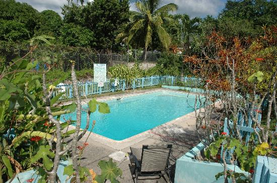 The Gardens Liguanea : The Pool