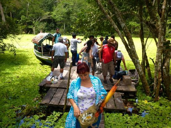 Amazon Reise Eco Lodge : Ingreso Lodge